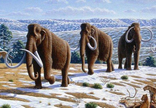 რამდენი სახეობაა უკვე გადაშენებული დედამიწაზე?