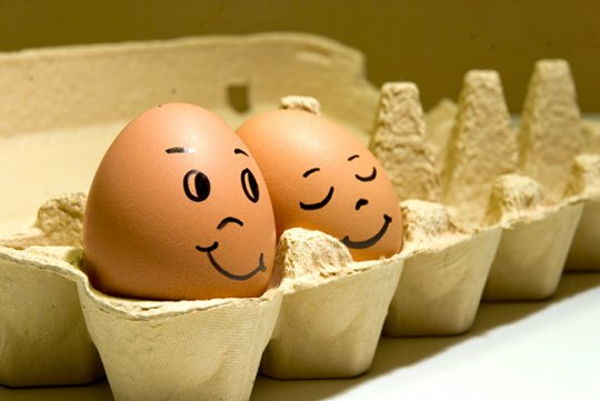 კვერცხის 7  სასარგებლო თვისება, რომელიც ბევრმა არ იცის. მიირთვით ყოველდღე!