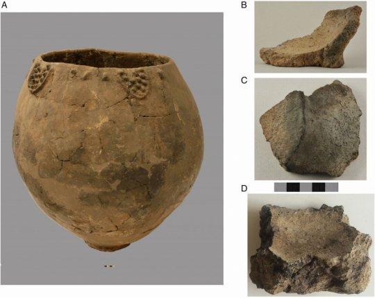 8000 წლის ქართული ქვევრი