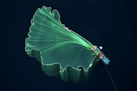 როგორ  გამოიყურება ჩვენი პლანეტა  ჩიტის  გაფრენის  სიმაღლიდან
