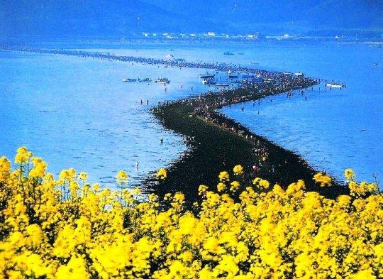 ბიბლიური სასწაული კორეის კუნძულზე: