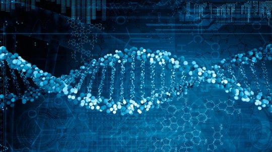 რამდენი ატომისგან შედგება ადამიანის დნმ-ის თითოეული მოლეკულა?