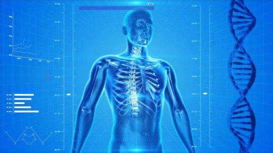 ადამიანის ორგანიზმის რამდენ პროცენტს შეადგენს წყალი?