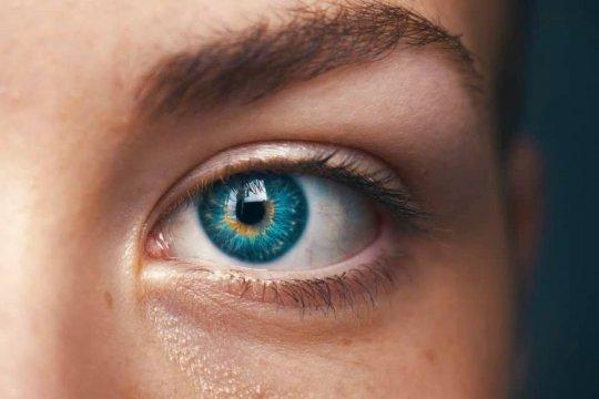 ერთი განმაცვიფრებელი ფაქტი შენი თვალების შესახებ