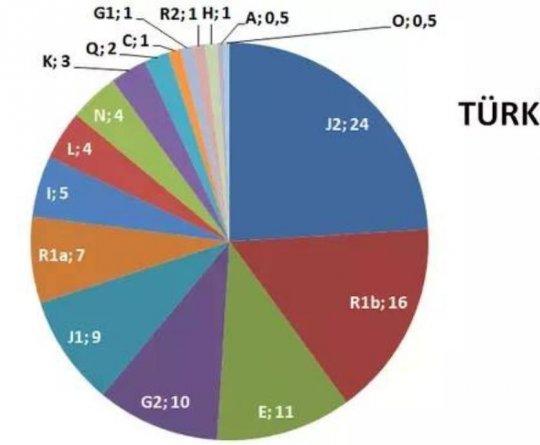 თურქეთის ჰაპლოჯგუფები