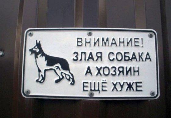 ეზოში ავი ძაღლია ხოლო სახლის პატრონები კიდევ უარესები. შავი იუმორი