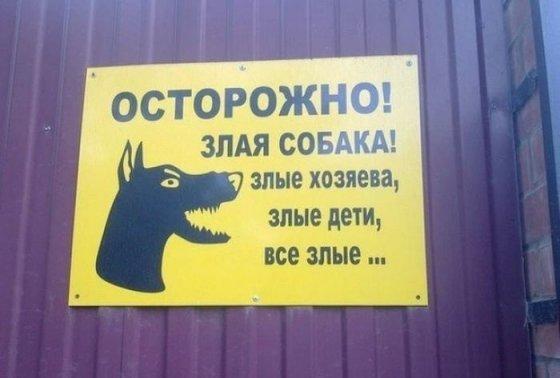ფრთხილად! ძაღლი ავია, სახლის პატრონებიც ავებია, ბავშვებიც და საერთოდ აქ ყველა ავია