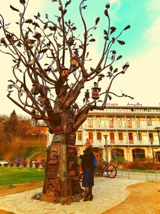 ნატვრის ხე