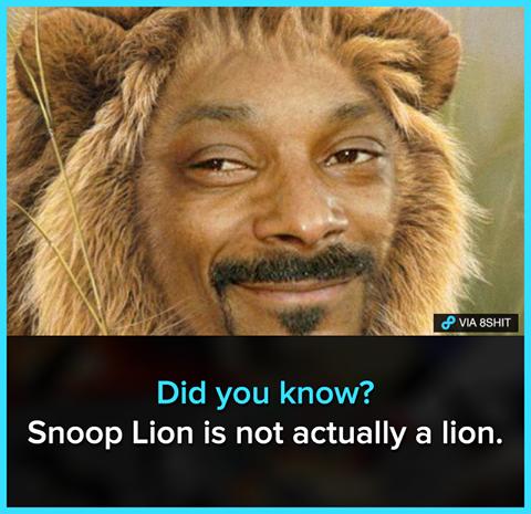იცოდით რომ...