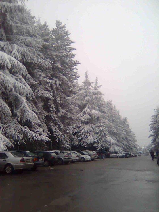 თელავი თოვლის ფერია