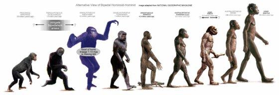 ევოლუცია