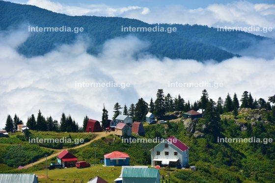 გომისმთა-პატარა  შვეიცარია  საქართველოში