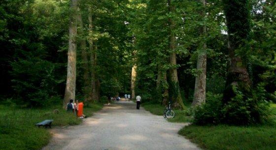 ზუგდიდის ბოტანიკური ბაღი ისტორიული ბაღების ევროპული კავშირის წევრი გახდა