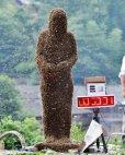 გინესის  რეკორდსმენი  ჩინელი მამაკაცი, რომელმაც ტანზე  40  კილოგრამი  ფუტკარი  დაიხვია