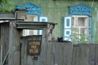 რას არ ნახავ და გაიგებ რუსეთში–ეზოში არც მეტი და არც ნაკლები ავი კატაა!