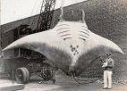 უნიკალური ისტორიული ფოტო-გიგანტური  ზღვის  ეშმაკი, რომელიც 1933 წელს დაიჭირეს