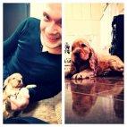 სალომე ჭაჭუამ ახალ მეწყვილეს- მაქს რიჟიკოვს ძაღლი აჩუქა