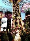 ულამაზესი წყვილი საახალწლოდ მორთულ მარინა ბეის ბაღებში