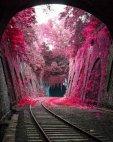 ლამაზი ხედი პარიზში, საფრანგეთი