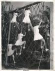 ამერიკის საზღვაო აკადემიის ახალწვეულების პირველი ვარჯიში, 1944 წელი