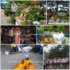 ყვავილების ფესტივალი მთაწმინდის პარკში