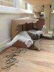 რას გულაობს კატა