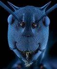 ჭიანჭველას მაკროფოტოსურათი