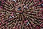 ადამიანების კოშკი 27-ე კასტელის ფესტივალის დროს ტარაგონაში (ესპანეთი)