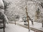 თბილისში ახალი წლის ღამეს თოვლია მოსალოდნელი