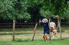 სელფი ძროხასთანაც სასიამოვნო ყოფილა