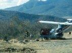 საოცარია, მაგრამ  ამ ავარიაში  არცერთი ადამიანი  არ დაშავებულა
