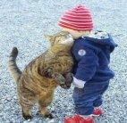 მეგობრობის უამრავი ფორმაა, მაგრამ გულწრფელ და უანგარო მეგობრობაზე ძვირფასი არცერთი არაა