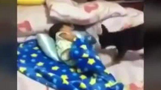 სანამ ბავშვს ეძინა,ძაღლი მას მიუახლოვდა და ... უსაყვარლესი ვიდეო