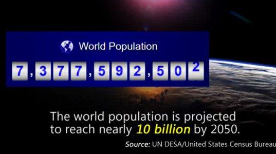 მსოფლიო მოსახლეობა (18 საათის წინანდელი ინფორმაცია)