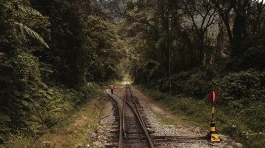 ვისაც მატარებლით მგზავრობა უყვარს (ულამაზესი ხედები)