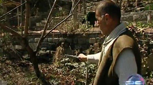 პოსტკრიპტუმი-ბესო გულმაგარაშვილი და ბაჩო კაკაბაძე