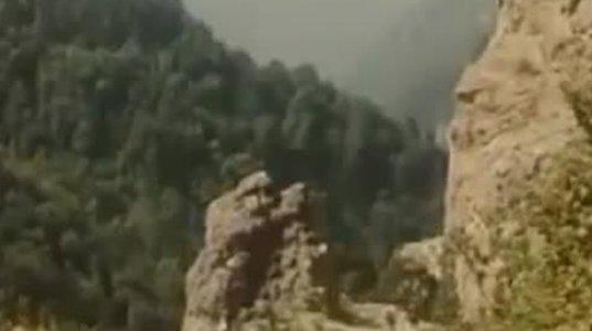 დათა თუთაშხიას და ბექარ ჯეირანაშვილის გენიალური დიალოგი ფილმიდან