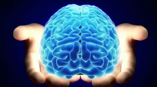 20 საოცარი ფაქტი ჩვენი ორგანიზმის შესახებ