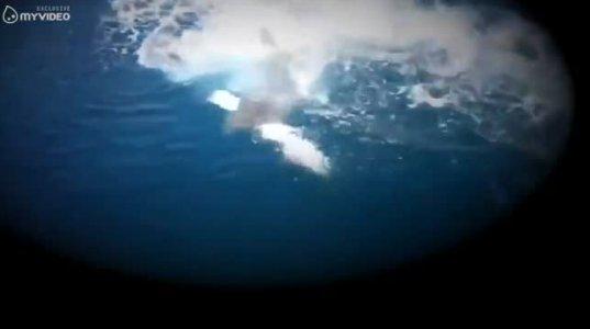 7 შოკისმომგვრელი მომენტი რომლებიც თევზაობის პროცესში დაფიქსირდა