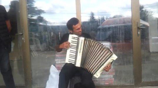 გული დაგეწვებათ,ქუჩის მუსიკოსი რომელიც გამვლელებს ართობს