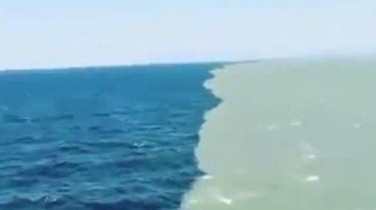 ბალტიისა და ჩრდილოეთის  ზღვების  შეხვედრა: მათი წყლები არ ერევა