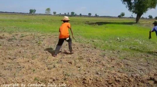 შოკისმომგვრელი შემთხვევა მიწის დამუშავების დროს - რა საშინელებაა!!