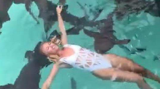 ზვიგენებთან მოცურავე გოგოს ვიდეომ ინტერნეტი დაიპყრო