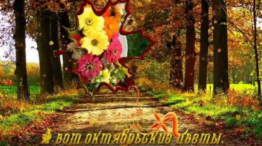 ოქტომბრის ყვავილები და ლამაზი მუსიკა შენთვის