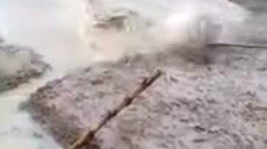 სოფლის მაცხოვრებლები ნიანგის დაჭერას ცდილობენ(ინდონეზია)