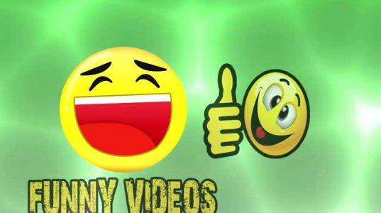 საუკეთესო ქართული ვიდეოს კრებული