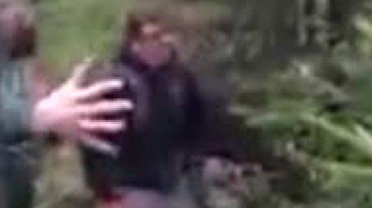 """ხეზე ამძვრალმა შეშინებულმა დათვმა ტურისტს ზედ """"დაასაქმა"""""""
