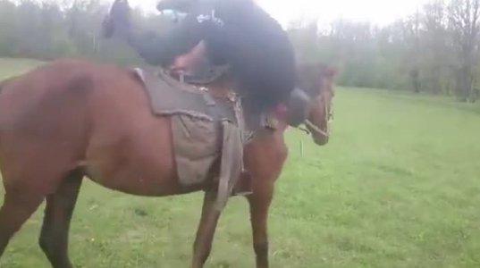 """მთვრალი რუსი მამაკაცის ცხენზე შეჯდომის მცდელობა მიწაზე """"ბრაგვანით"""" დასრულდა"""