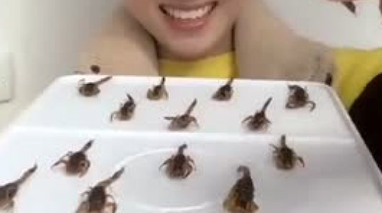 ჩინელი გოგონა მრავალფეხას,ტარაკანებს და მორიელებს ხალისით ჭამს