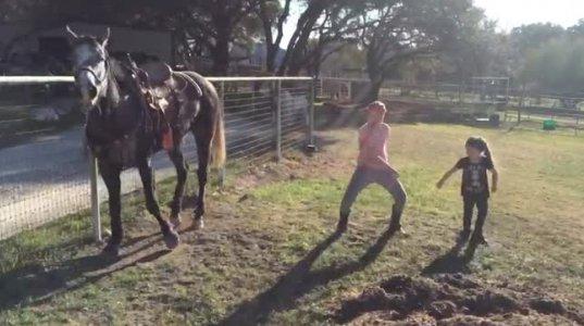 გოგონები ცეკვავდნენ და მათ ცხენიც შეუერთდა